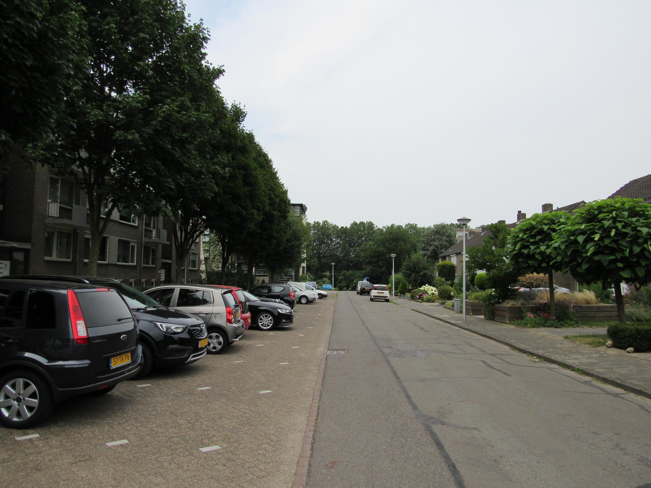 Zeepziedersdreef, Maastricht