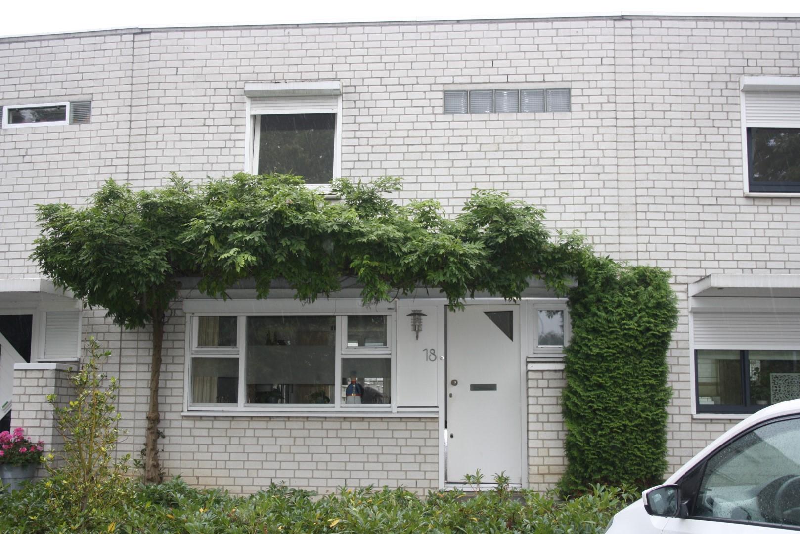 Plantagobeemd